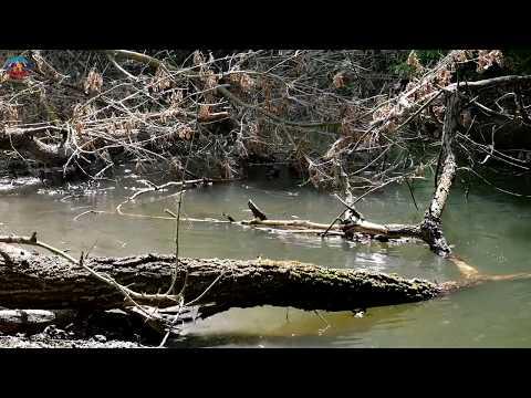 lgikvideo: расчистка заторов на реках
