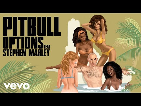 Pitbull - Options (DJ Noodles Remix) [Audio] ft. Stephen Marley