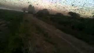 Video: La plaga de langostas sigue afectando a Santiago del Estero (imágenes de diario Panorama)