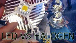 LED VS HALOGEN Светодиод против галогенки.
