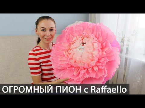 Большой пион с коробкой Раффаелло. Ростовой пион из гофрированной бумаги. Большие цветы. Buket7ruTV