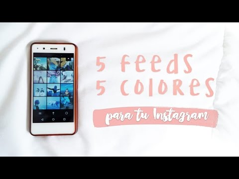 5 FEEDS para Instagram con VSCO