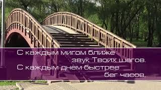 Анастасия Яценко.  Выше звёзд