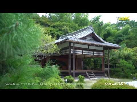 """α7S II - High quality 4K movie """"Takigi-noh"""" in Full frame   Sony   Alpha   A7S II"""
