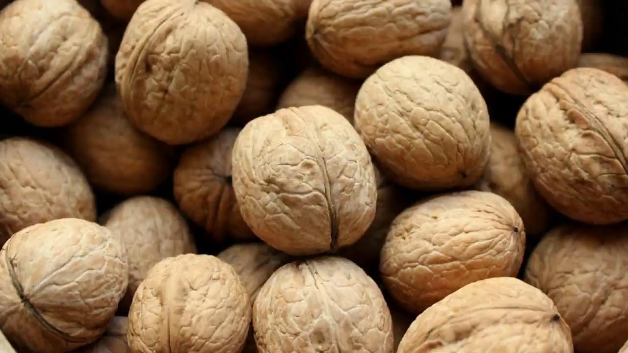 Грецкий орех польза и вред грецкого ореха.