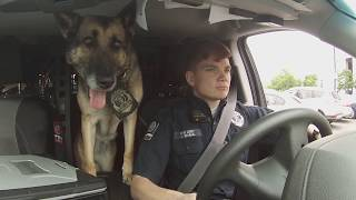 A&People - Officer Joanna Shaul and K9 Rita