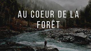 Au coeur de la forêt/Sony A7C …