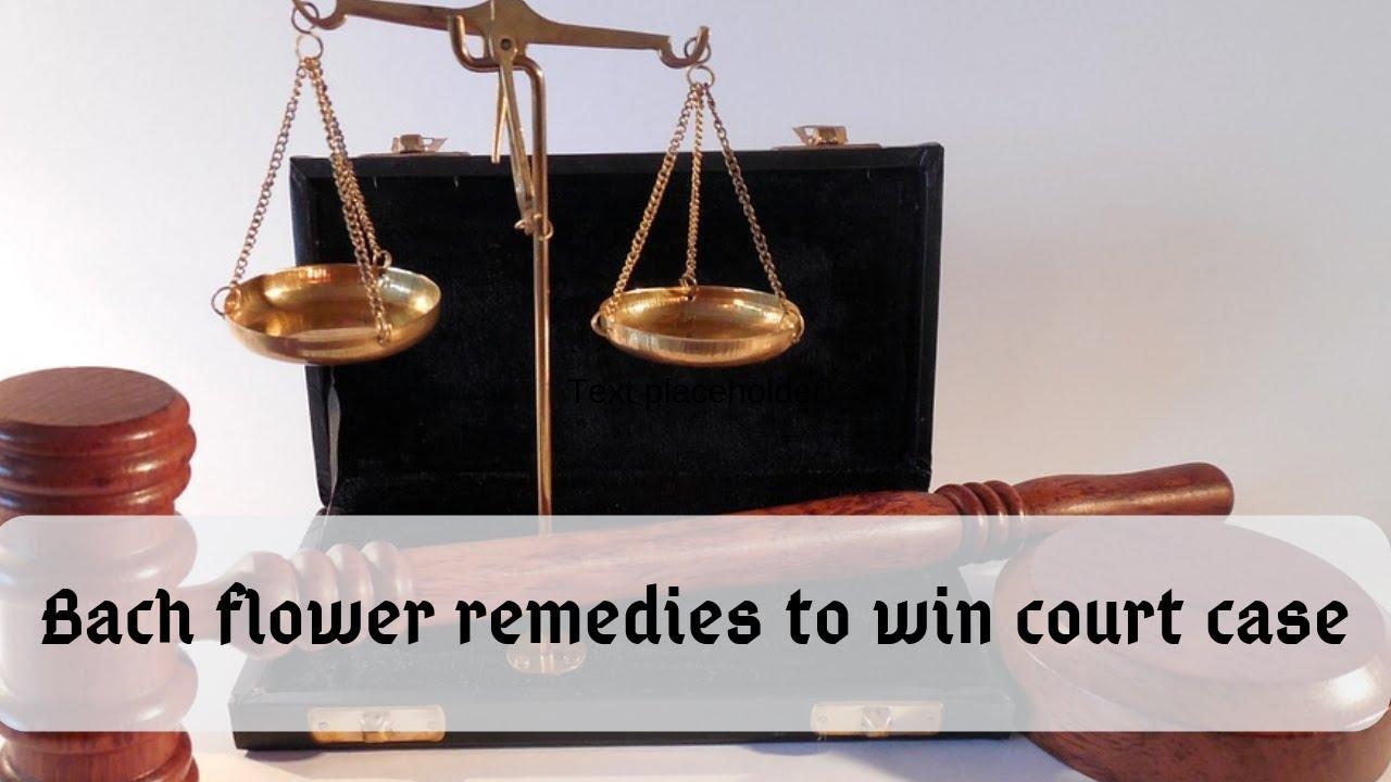 Bach flower remedies to win court case part 1/बैच फ्लावर रेमेडीज कोर्ट केस  को जितने लिए