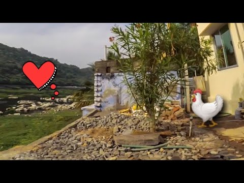 Фото Fpv Freestyle Interpid Chicken #fpvfreestyle