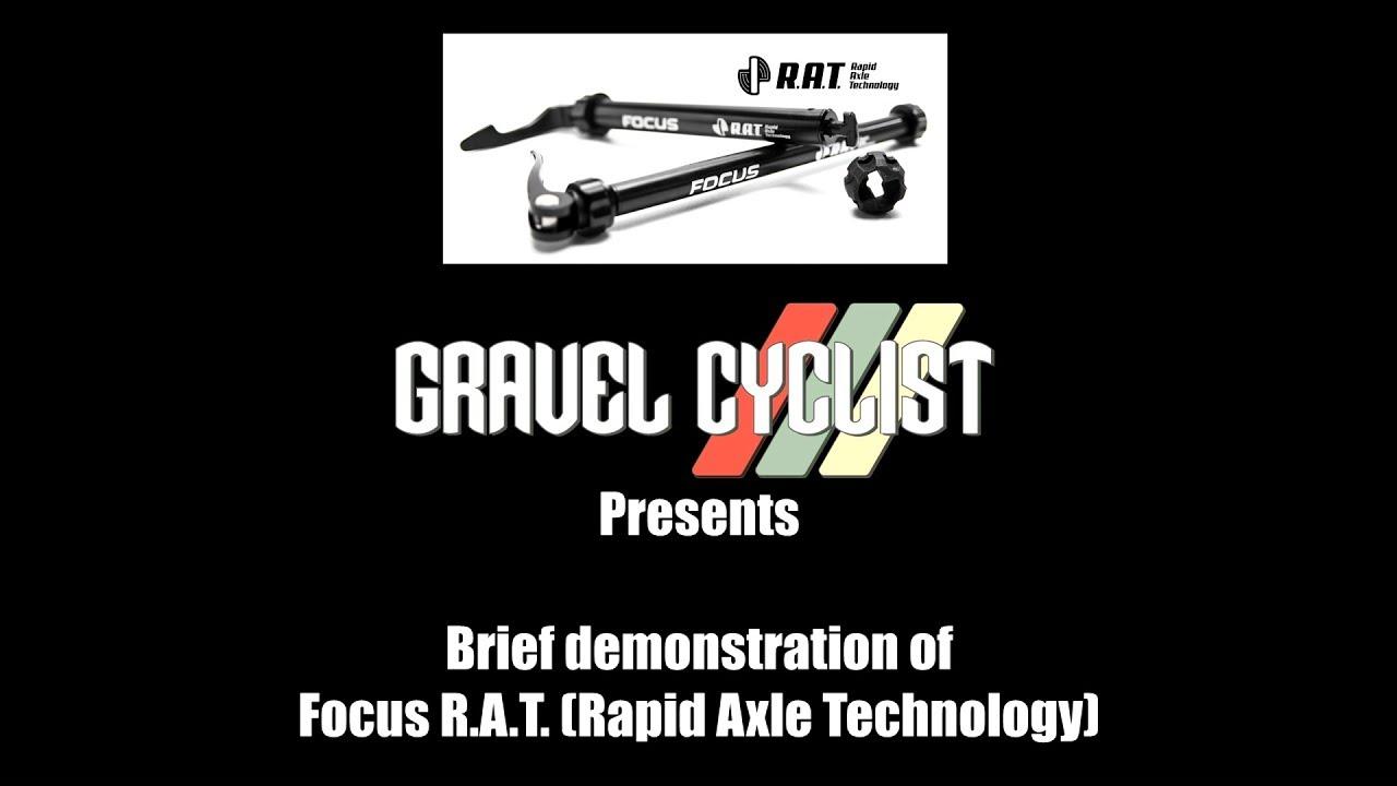 Nouveau Focus RAT arrière axe traversant 155.7 mm