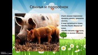 Домашние животные. Анимационные картинки для детей.