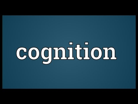 Cognition Meaning