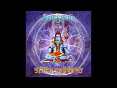 Salvinorin - Shiva Sadhana [Full Album]