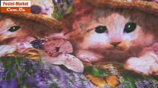 Покрывало с котами Viluta 10