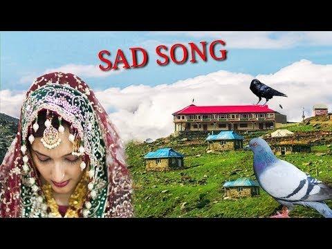 Download NEW PAHARI HD VIDEO SONG BEST PAHARI VIDEO GEET PAHRI GOJRI SONG GUJRI SONG GOJRI GEET PAHARI CLUB