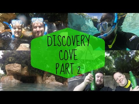 Discovery cove part 2 - Waterfalls, otters, parrot's & snorkelling