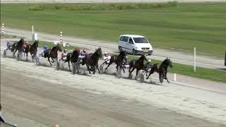 Vidéo de la course PMU PRIX WEDKANTOOR DE PASSAGE