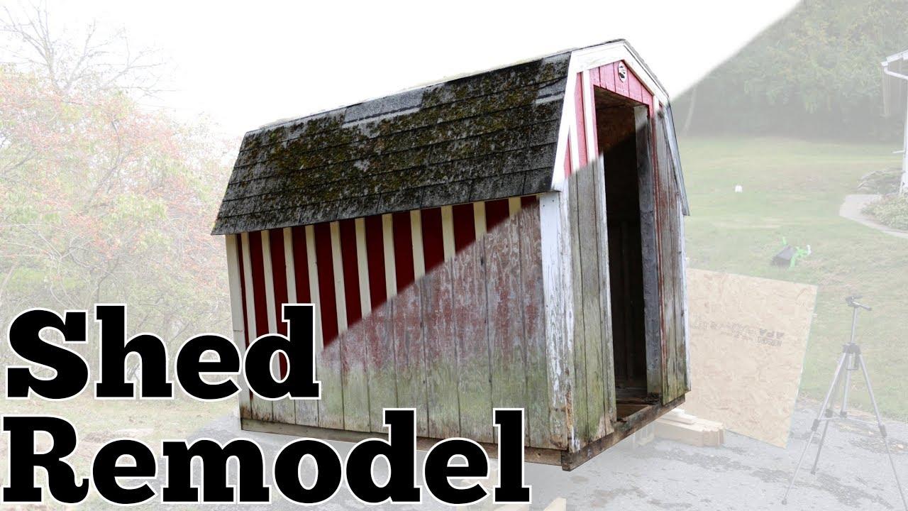 Shed Remodel Pt 1 You
