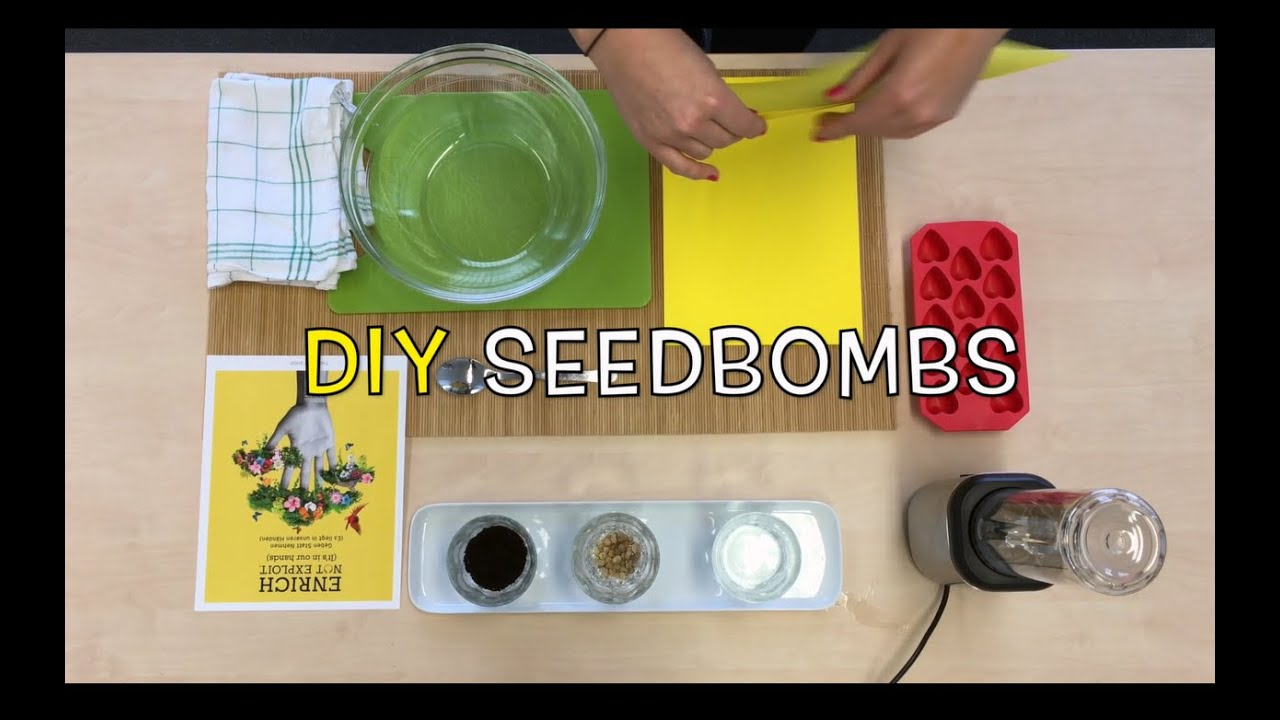seedbombs selber machen diy by the body shop youtube. Black Bedroom Furniture Sets. Home Design Ideas