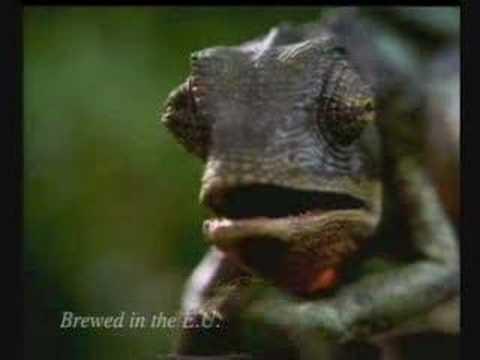 Budweiser frog advert