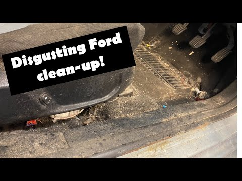 Cleaning A Disgusting Ford Mondeo / Contour Car! Disaster Detail