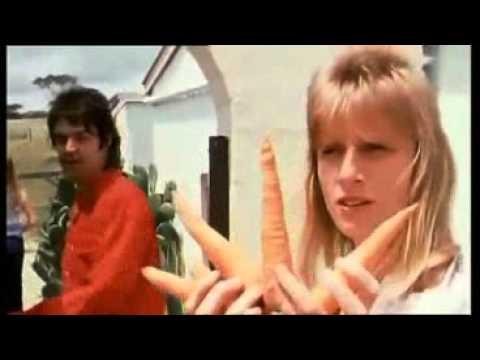 Paul McCartney and Linda McCartney & wings  Monkberry Moon Delight Music  1971