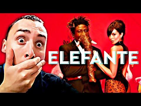 NK - ELEFANTE | РЕАКЦИЯ