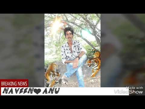 Gundellopallo Nee chitram dachesi song WhatsApp_status