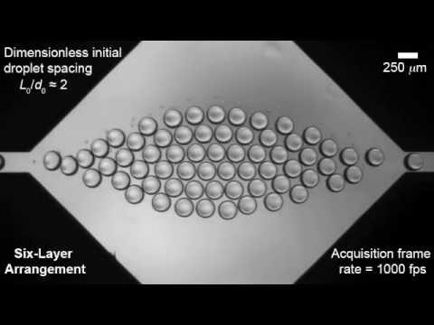 Droplet assembly in a microfluidic chamber