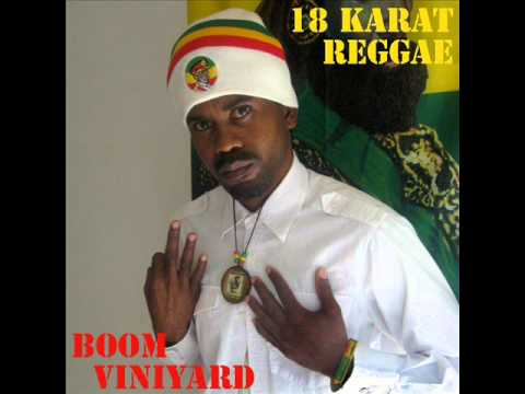I survive (Radio Version) - Boom Viniyard