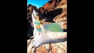 Belly Dance Music - Art of the Drum & Modern Darbuka mix