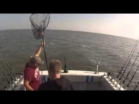 Hollywood fishing 7. 11. 15