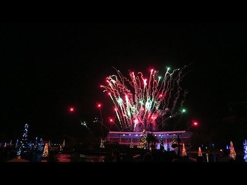 A Christmas Celebration At Seaworld Orlando 2015 - Sea Of Trees & O Wondrous Night!!!