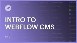 Webflow CMS for beginners