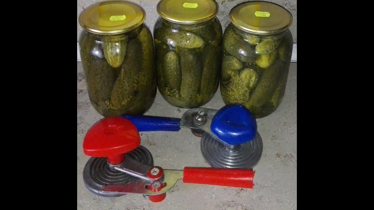 Pagirios: 10 sveikatos taisymo būdų - DELFI Gyvenimas - Marinuoti agurkai riebalų degintojas