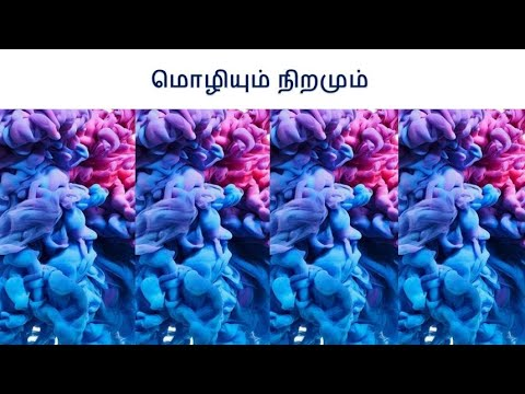 மொழியும் அறிவும் | Tamil | Linguistic Relativity (Sapir–Whorf) | Evvi | எவ்வி | பாயிரம் ஆயிரம் |