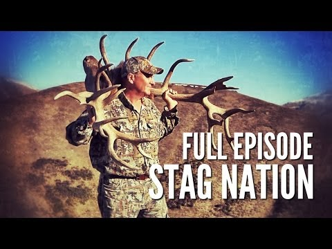 """New Zealand Red Stag Hunting - """"Stag Nation"""""""