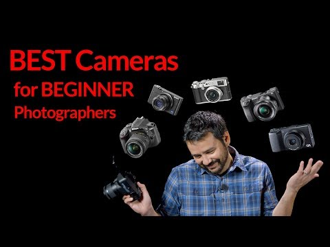Best Cameras for Beginner Photographers