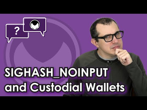 Bitcoin Q&A: SIGHASH_NOINPUT and custodial wallets