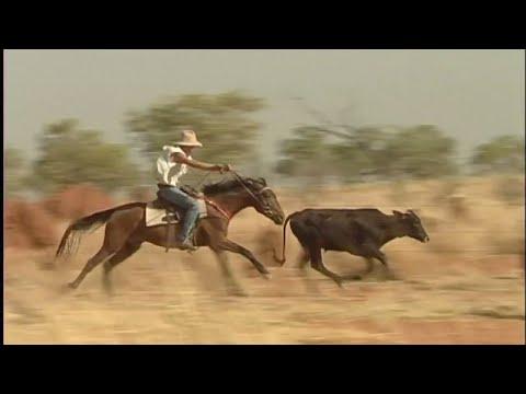 Ringers of the Kimberley