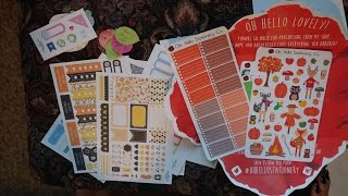 Etsy Sticker Haul: Organizing Companion, Sweet Ava, Oh Hello