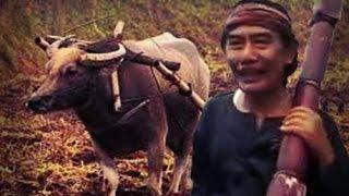 Tarling SUMPAH SUCI - Voc H Abdul Adjib (Tarling Nostalgia Dermayon Cirebonan)