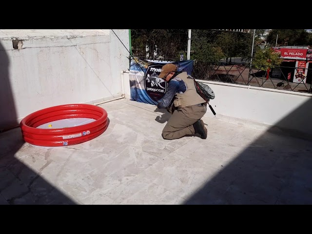 #FLYFISHINGCHALLEGE Cuarentena Pescando en Casa
