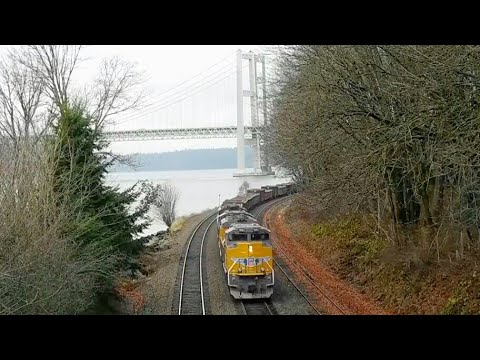 Trains Under the Narrows at Titlow Park with Amtrak, Union Pacific, and BNSF | Tacoma, WA 12/16/17
