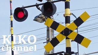電車と踏切の動画 JR特急と普通電車の通過集 阪和線から railroad crossing japan thumbnail