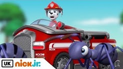 Paw Patrol | Pups Save Tiny Marshall | Nick Jr. UK