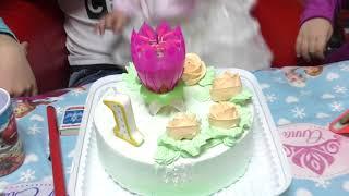 Подготовка и день рождения