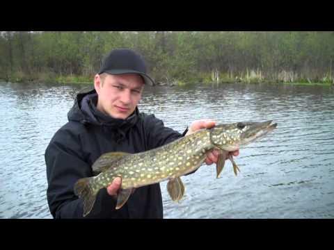 Season Opening Berlin - Hechtangeln in Berlin - Pike Fishing
