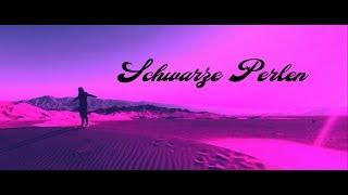 METRICKZ feat. BUSHIDO - Liebe & Hass (Mashup)