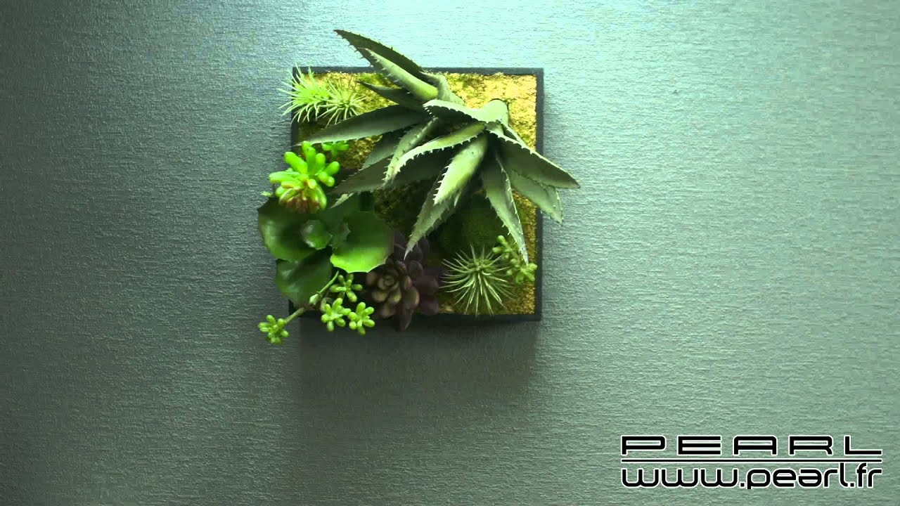 nx1325 tableau v g tal avec cadre succulentes 20 x 20 cm youtube. Black Bedroom Furniture Sets. Home Design Ideas